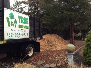 Wood Chip Delivery